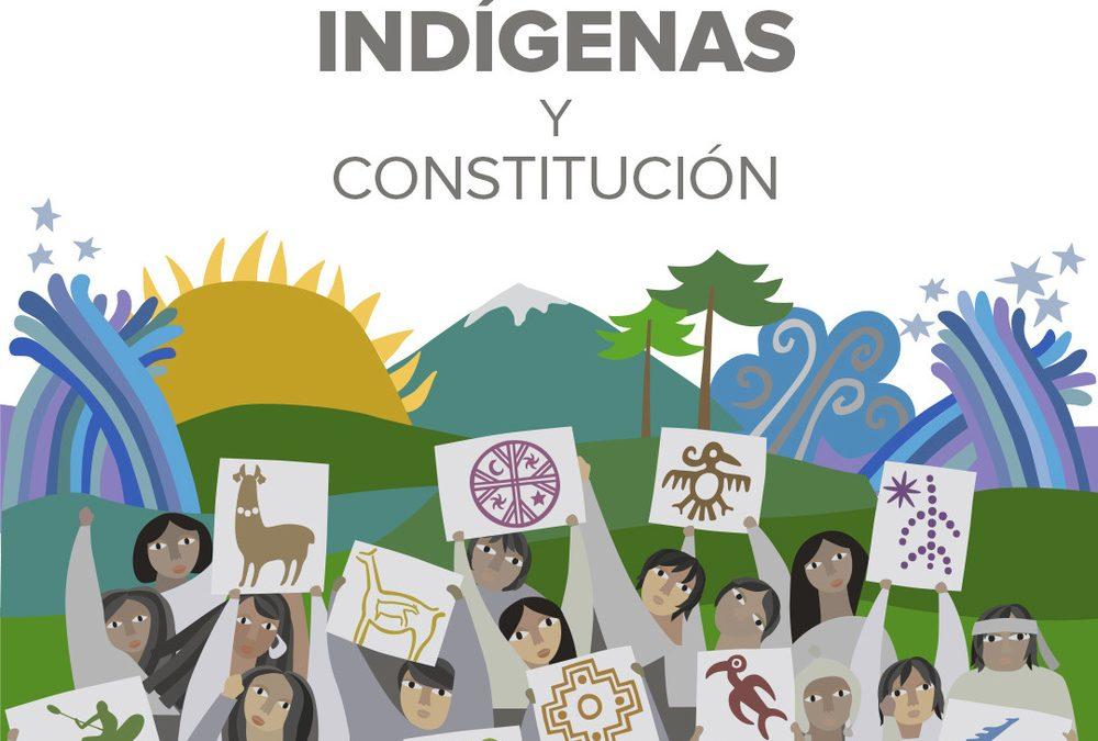 ACNUDH y PNUD CHILE presentan plataforma web Pueblos Indígenas y Constitución