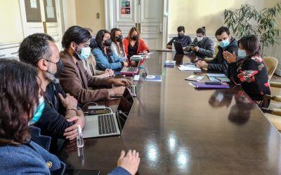 Ciudadanías quieren participar de la manera más directa posible en el proceso constituyente